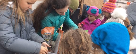 Students at The Toronto Heschel School, a jewish/hebrew day school in Toronto take part in an tu bishvat initiative as part of environment week.